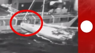 Man & cat leap from yacht to rescue boat in treacherous rough seas