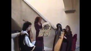イタリア人 ルネッサンス音楽トリオ アルパ(ハープ)ウード、タンブー...