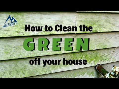How to Remove Green Algae from Vinyl Siding - Fast and Easy (For Less than $10)