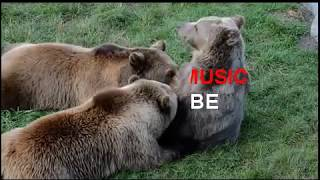 Baby music, kids sleeping songs, relaxing, calming with inspiring life quotes.