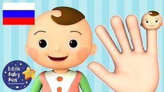 детские песенки | Семья пальчиков | мультфильмы для детей | Литл Бэйби Бум