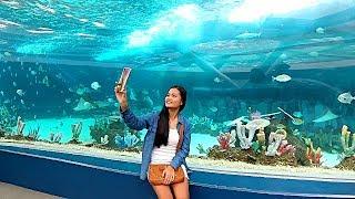 The Cebu Ocean Park - Philippines