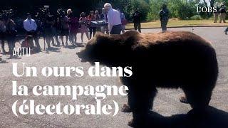 En Californie, un candidat républicain au poste de gouverneur fait campagne avec un ours