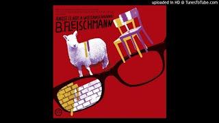 B. Fleischmann - Even Your Glasses Miss Your Eyes