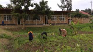 Dance Up from the Street - A Documentary about RDDC in Rwanda