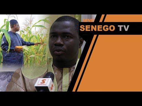Agriculture au senegal: le plus value de Prince Mbacké