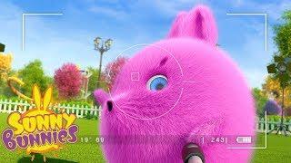 Cartoons for Children | SUNNY BUNNIES - BIG BOO'S PHOTO SHOOT | Funny Cartoons For Children