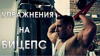 Как накачать бицепс Проверенные упражнения(В нашем новом видео нам расскажет как накачать бицепс и покажет выполнение упражнений на бицепс заслуженны..., 2013-07-24T06:37:50.000Z)