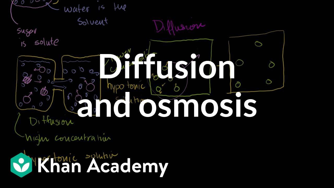 Diffusion And Osmosis Membranes And Transport Biology Khan