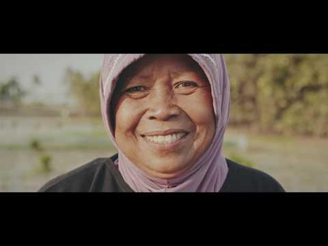 An Insurance For Smallholder Farmers
