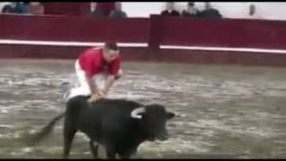 Bull fight funny Game ....
