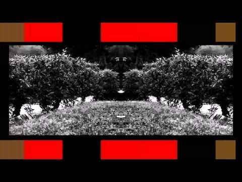 Empire of the Sun Walking on a Dream remix Kolt13 HD
