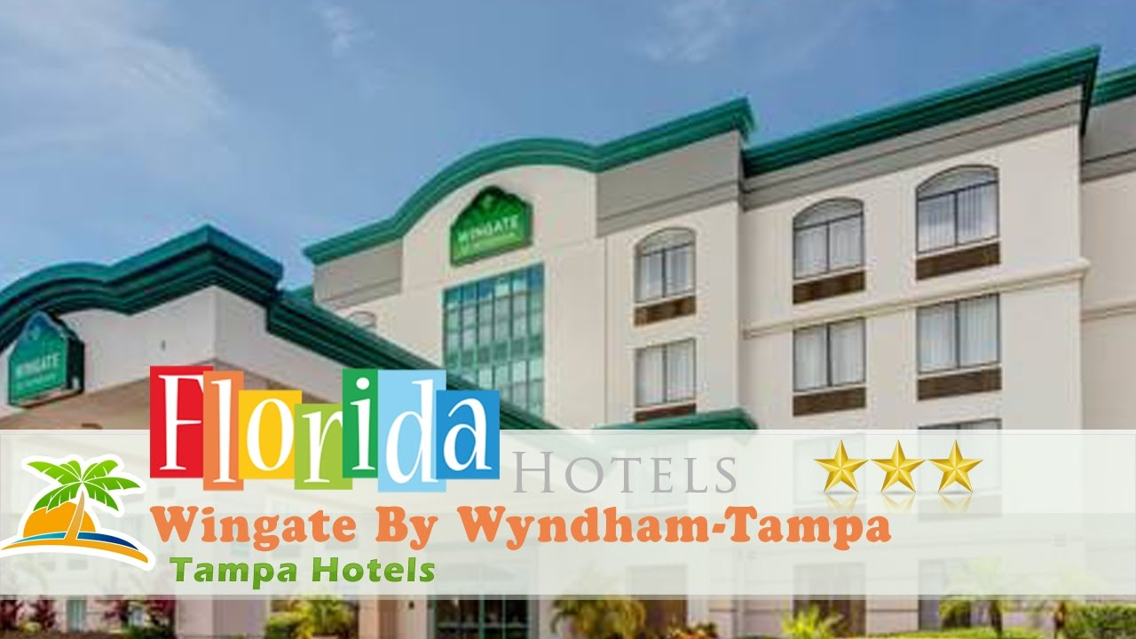 Hotels Close To Usf Tampa