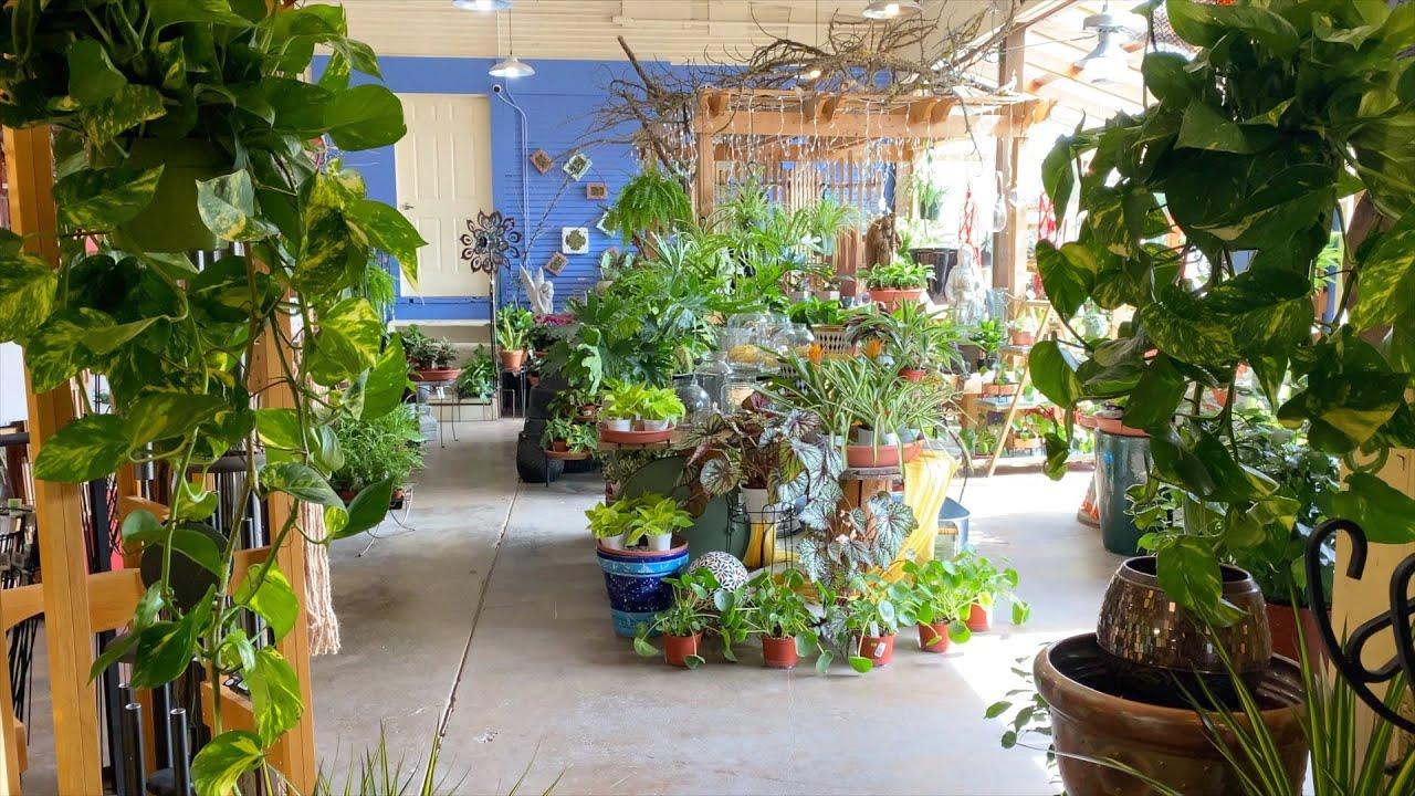 Download Garden Center Houseplant Tour! 🌿🙌💚 // Garden Answer