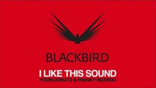 Youri Donatz & Franky Rizardo - I Like This Sound  (Edit)