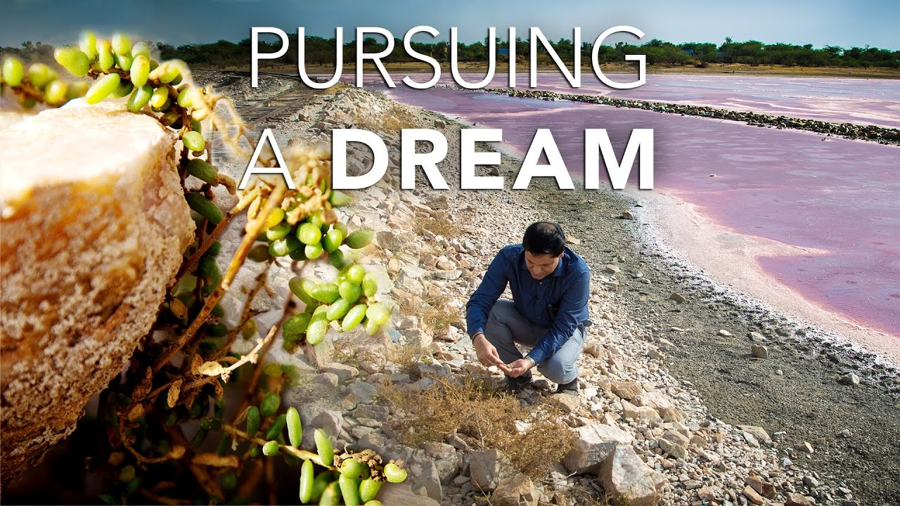 Pursuing a dream tackling climate change and soil for Soil salinization