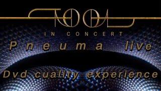 PNEUMA Live 2020. High Quality.