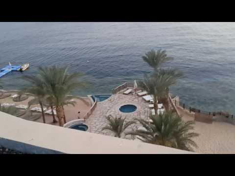 Египет Reef Oasis Blue Bay  видео обзор