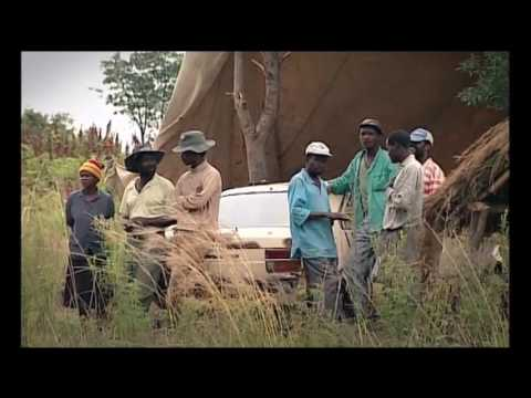 Mugabe's violent farm invasions