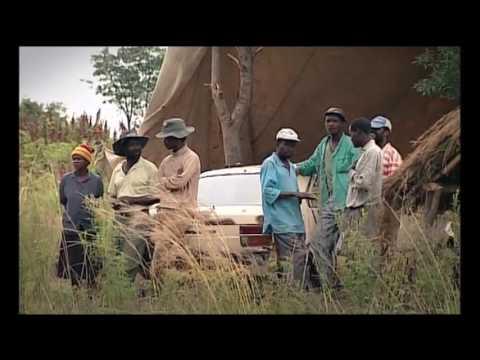 Zimbabwe Police Plunder Invaded Farm