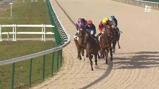 Vidéo de la course PMU PRIX DE LASSEUBE