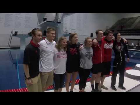 USD Swim & Dive Summit League Championship 2017
