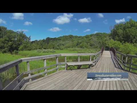 Relaxing stroll along a nature trail boardwalk.