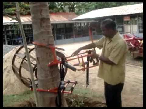 Coconut Tree Climber Youtube