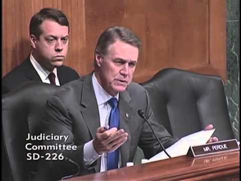 Senator David Perdue at Judiciary