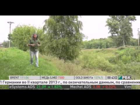 Город Буй на РБК ТВ