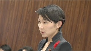 Japan: Two ministers quit government within hours amid political scandals