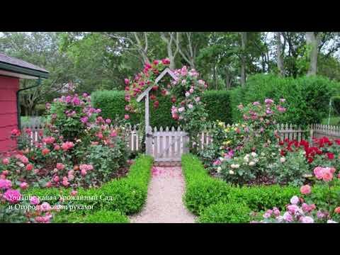 ЛАНДШАФТНЫЙ ДИЗАЙН УЧАСТКА. Красивый сад и огород