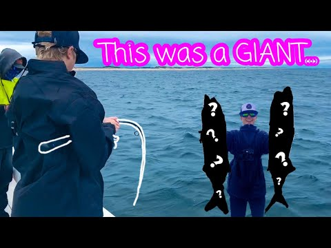 These FISH Were HUGE...😱😱 |Cape Cod Series Episode 2|