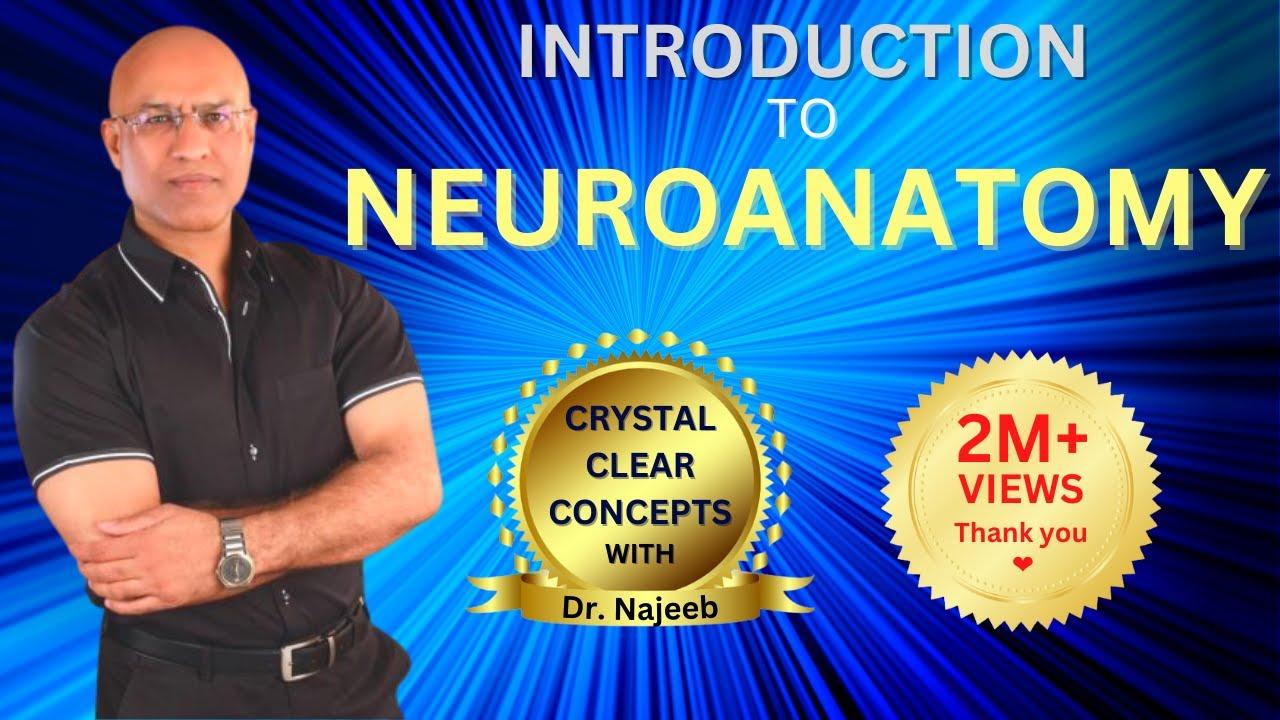 Introduction to Neuroanatomy - Neurophysiology