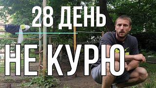 Дневник курильщика 28 ДЕНЬ не курю 3 недели как не курить бросить курить