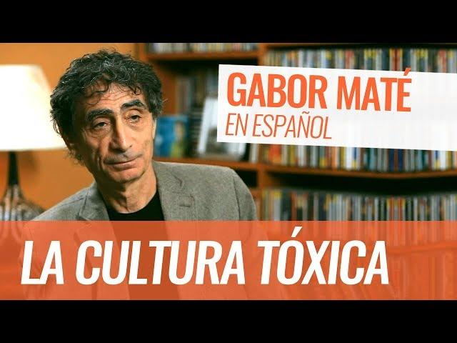 Gabor Maté: La cultura tóxica