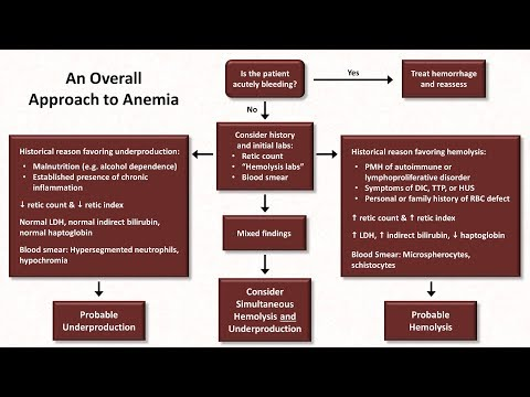Anemia: Lesson 5 - An Approach to Diagnosis