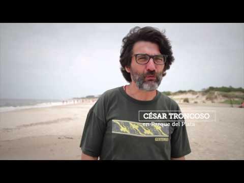 uruguay de la mano de los famosos