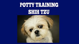 How To House Train Shih Tzu
