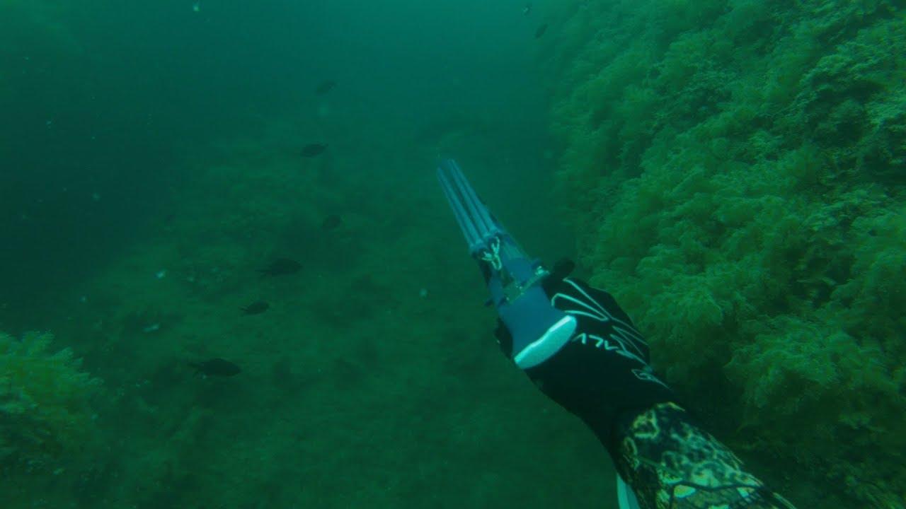 За трофеями.  Подводная охота в Черном море.