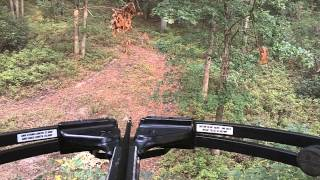 Video South Jersey 9 Point Whitetail Using Barnett Wildcat C5 download MP3, 3GP, MP4, WEBM, AVI, FLV Mei 2018