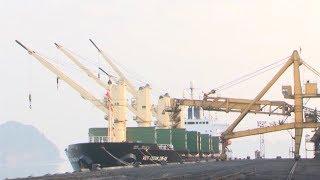Tin Tức 24h: Những tấn than đầu tiên trong năm mới