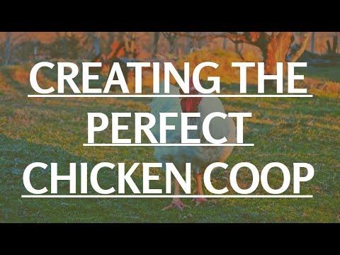 Swingset Chicken Coop   Chicken Coop Plans For 20 Chickens