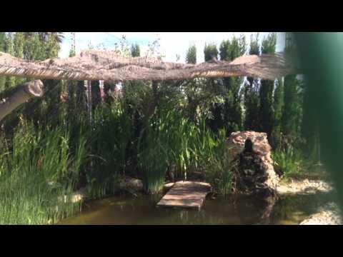 Consejos para el jard n c mo construir un estanque for Como construir un estanque en el jardin