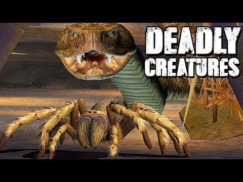 mein-leben-als-tarantel---deadly-creatures-gameplay-deutsch-#01