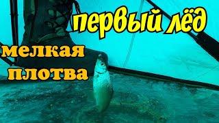 Рыбалка 29 насосная канал Сатпаев Ноябрь Балық аулау 29 Сәтпаев сорғы каналы Қараша