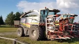 | Koszenie kukurydzy na 2 sieczkarnie | 3x Class | Fendt | 2x Case |