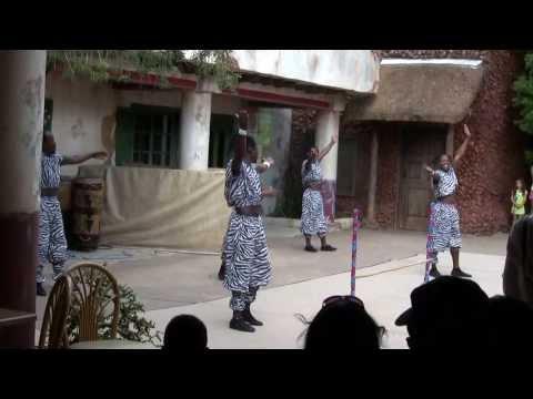 africa acrobats