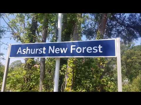 Trains At Ashurst New Forest - 14/06/17