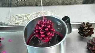 How to: Pine Cone Fire Starters